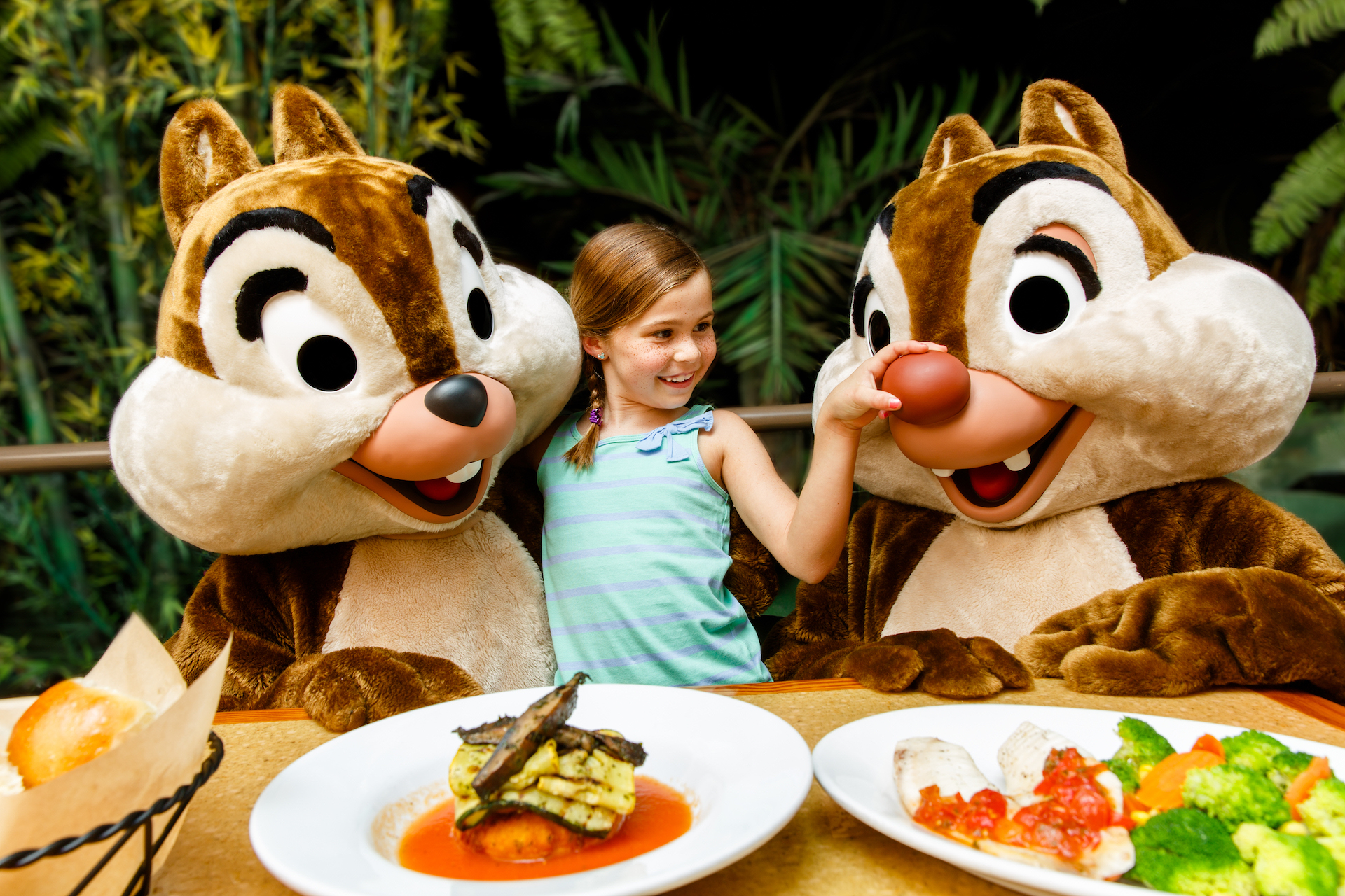 Chip and Dale Character Meal