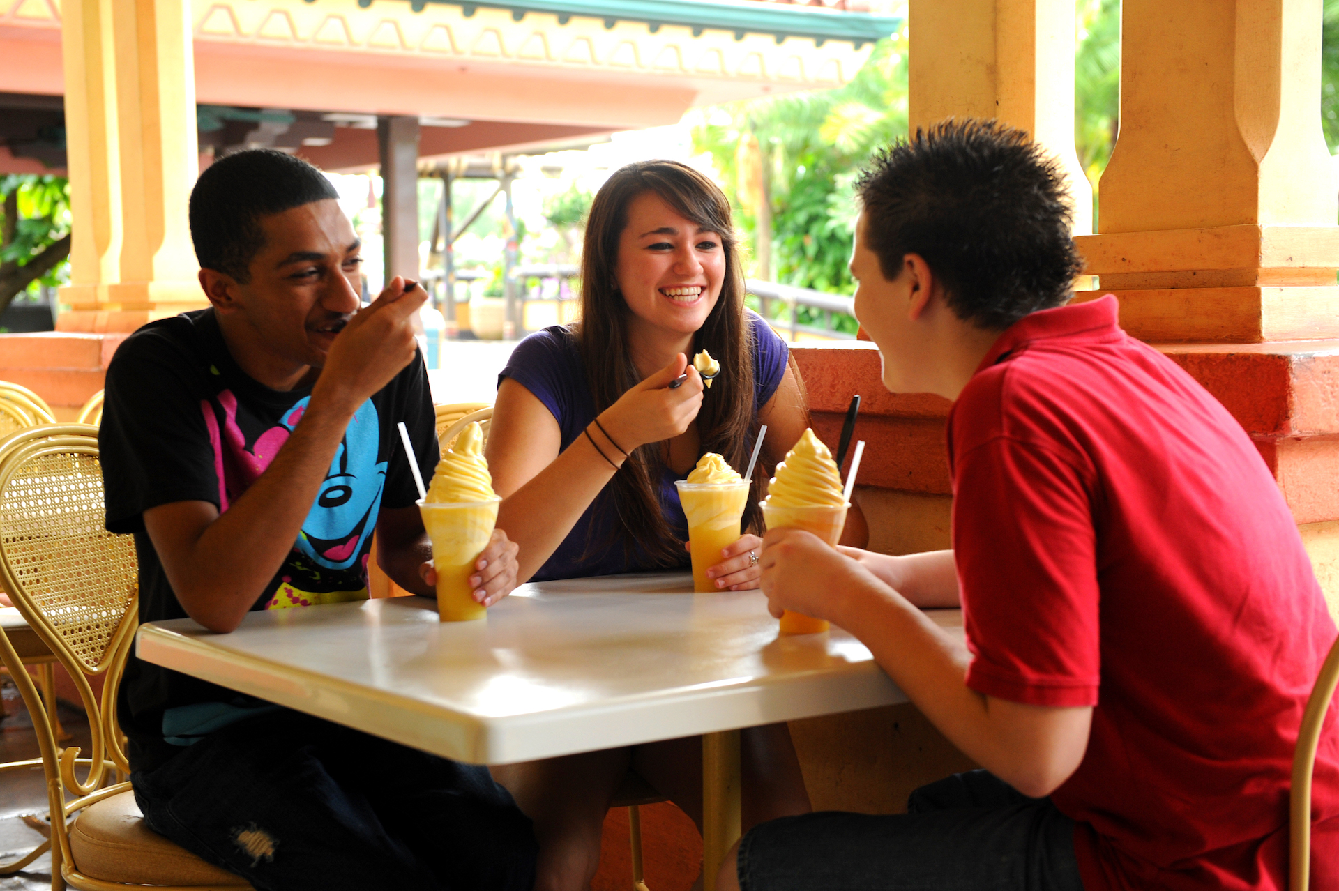 8 Must Know Disney Dining Plan Tips