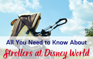 All you need to know about strollers at Disney World